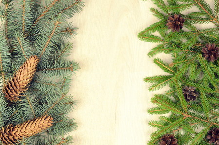 hogmanay: branches of two varieties spruce and fir cones on a  wooden background