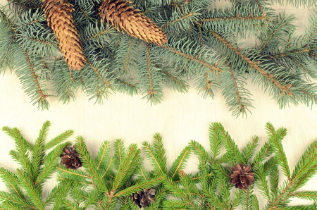 stuffer: branches of two  varieties spruce and fir cones on a wooden background Stock Photo