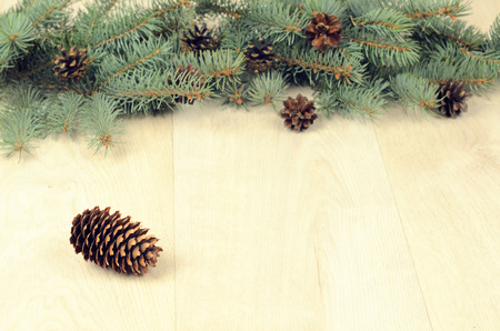 branches of blue spruce and cones on a wooden background. christmas background