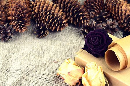 metier: Natural items collection for handcraft (paper, pine and spruce cones, cardboard box, dried flowers) Stock Photo