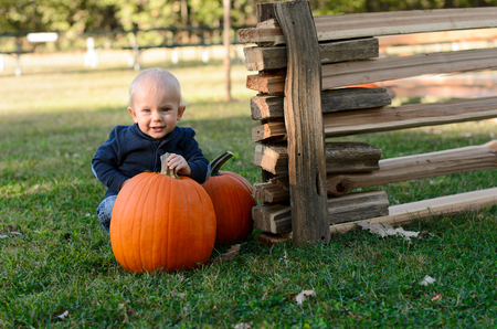 Baby with two ripe pumpkins. Picking pumpkins in pumpkin patch. Halloween, Thanksgiving holidays season Standard-Bild - 106913773