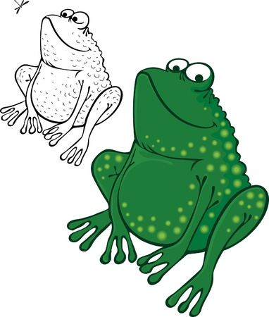 anuran: funny frog sitting and smiling.