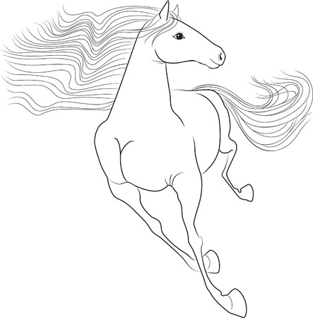 natural forces: Silhouette of a running horse  The symbol of the coming year in the Chinese calendar  Illustration