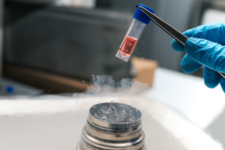 A Liquid Nitrogen bank containing suspension of stem cells. Cell culture for the biomedical diagnostic. 写真素材