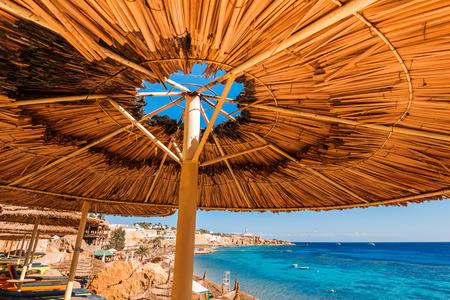 sharm el sheikh: umbrellas on beach  in coral reef,   Sharm El Sheikh,  Egypt