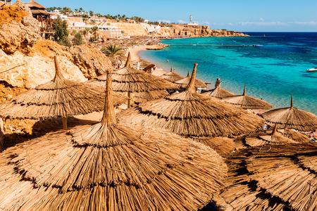 el sheikh: Egyptian sunbeds on the beach,    Sharm El Sheikh,  Egypt