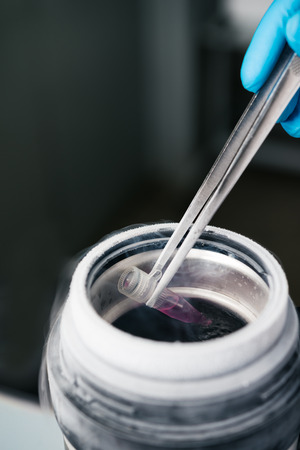 Scientist holding tube with suspension of stem cells for cryopreservation in Liquid Nitrogen bank.