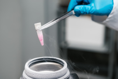 Scientist working in A Liquid Nitrogen bank. Cryopreservation of suspension of reproductive cells.