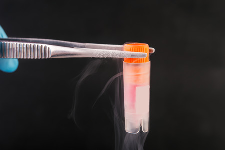 nitrogen: scientist holding  cryotube with cell suspension  on liquid nitrogen bank. Stock Photo