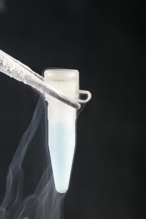 sperm: scientist holding  cryosample on liquid nitrogen bank.  Sperm and Stem Cells  Bank Storage Stock Photo