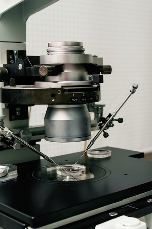 in vitro: microscope for in vitro fertilization process close up. Equipment on laboratory of Fertilization, IVF.