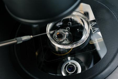体外受精のプロセスのための顕微鏡をクローズ アップ。受精、体外受精の研究室の装置です。ハイテクの実験装置。 写真素材