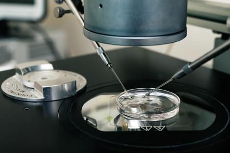 Embryologist transferring   eggs for in vitro fertilization process. Equipment on laboratory of Fertilization, IVF.
