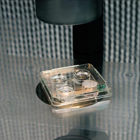 vitro: microscope for in vitro fertilization process close up.  Equipment on laboratory of Fertilization, IVF. Foto de archivo