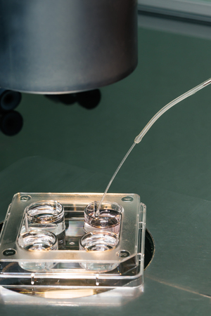 ivf: Embryologist transferring   eggs on vitrification solutions. Cryopreservation process. Equipment on laboratory of Fertilization, IVF. Stock Photo