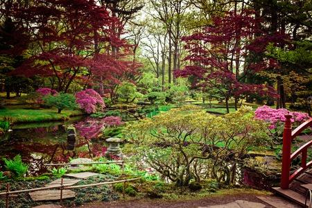 Beautiful Japanese garden in spring. Den Haag, Holland Stock Photo