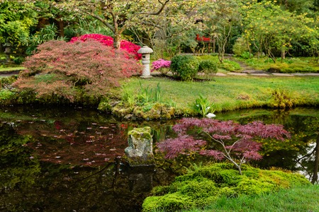 Beautiful Japanese garden in spring, Den Haag, Holland Banque d'images