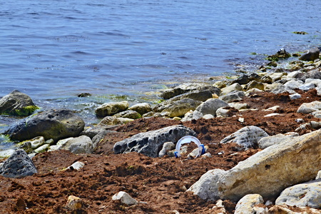 Polluted coastline with plastic, polyethylene, plastic bottles and trash, environmental issues, massive pollution of the oceans and seas, ecological disaster of the 21st century Archivio Fotografico