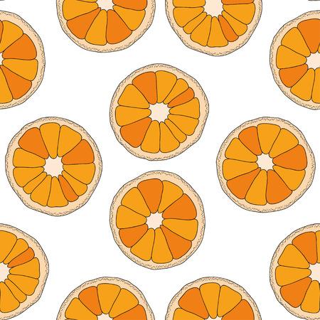 turquiose: Citrus seamless pattern. Oranges isolated on white background. Illustration