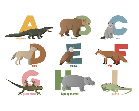 animals x ray: Vector image of alphabet with animals for children