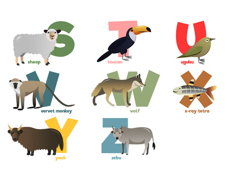 aligator: Vector image of alphabet with animals for children