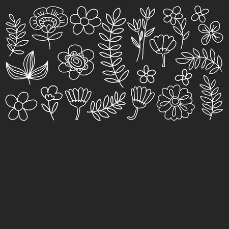 phytology: Vector pattern with flowers Hand drawn images