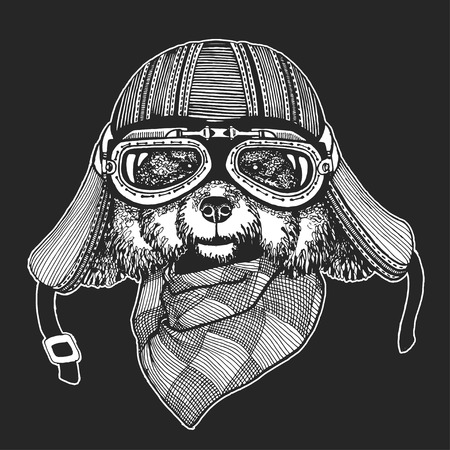 realism: Vintage images of dogs for t-shirt design for motorcycle, bike, motorbike, scooter Hand drawn vector image