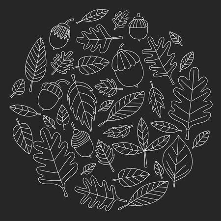linden: Pattern with autumn leaves Oak Mapple Acorn Linden Vector images