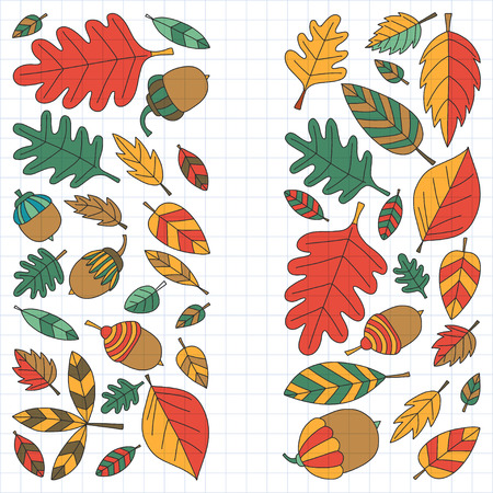 vector images: Pattern with autumn leaves Oak Mapple Acorn Linden Vector images