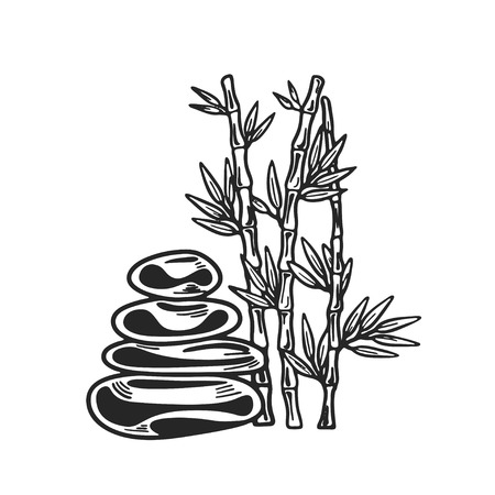 Bamboo icon. Vector art. Spa and beauty