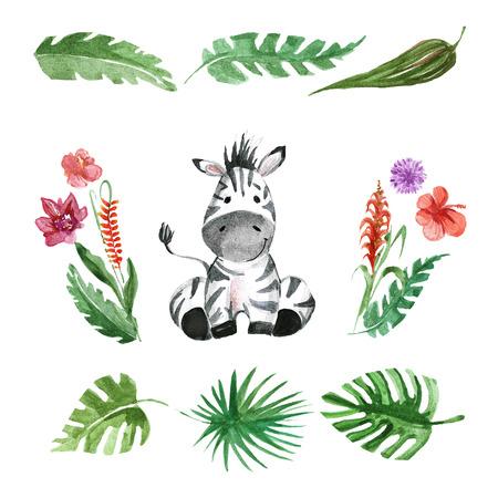 Schattige baby Zebra Animal voor de kleuterschool, kinderdagverblijf, kinderen kleding, kinderen patroon, uitnodiging, baby shower