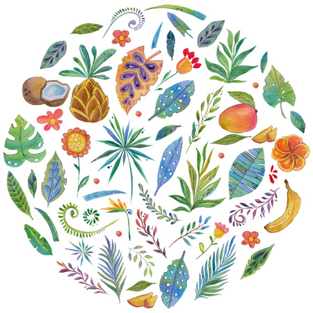 Watercolor pattern with tropical plants and fruits Hand drawn image Stock Photo