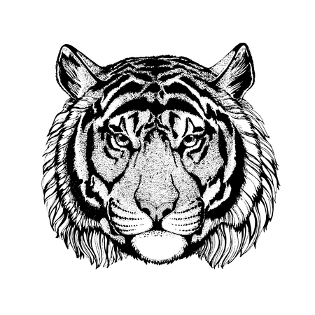 Vector tiger for tattoo, sport logo, t-shirt, poster