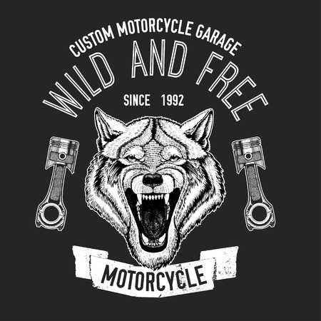 agressive: Wild wolf Vector image for motorcycle t-shirt, tattoo, motorcycle club, motorcycle logo