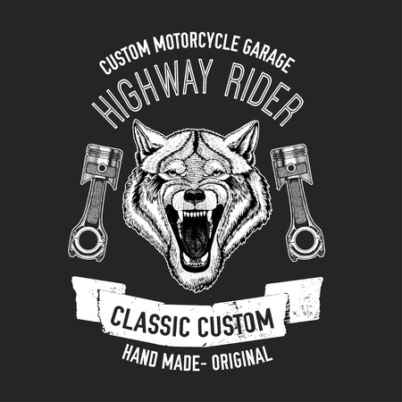 agressive: Wild wolf Vector image for motorcycle t-shirt, tattoo, Stock Photo