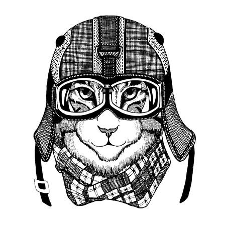 Wild cat Wild cat The cat wears a motorcycle helmet Hand drawn picture Banco de Imagens