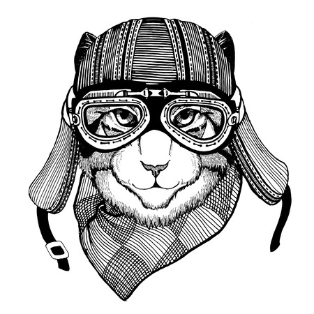 Wild cat Wild cat The cat wears a motorcycle helmet Hand drawn picture Stock Photo