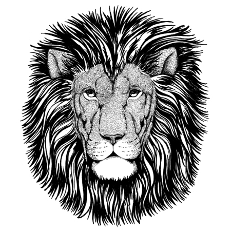 Wilde kat Wilde leeuw beeld Hand getrokken voor t-shirt, posters Stockfoto