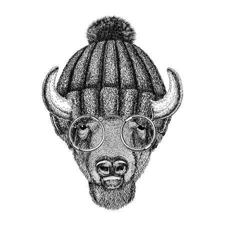 Hipster Bison wearing glasses and winter knitted hat Stock Photo