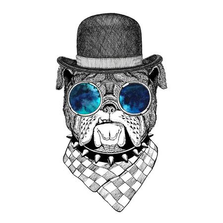 Bulldog Imagen de tatuaje, logo, emblema, diseño de la insignia Foto de archivo