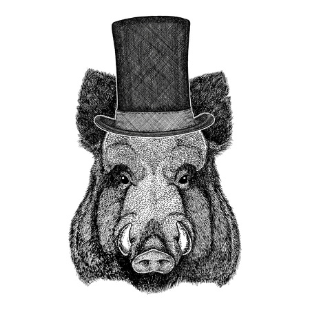 stove pipe: Cool boar picture for beer branding, food branding, posters Fashionable Image for tattoo, logo, emblem, badge design