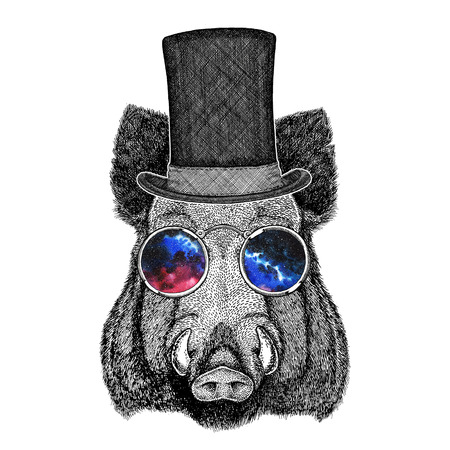 chimney pot: Cool boar picture for beer branding, food branding, posters Fashionable Image for tattoo,  , emblem, badge design Stock Photo