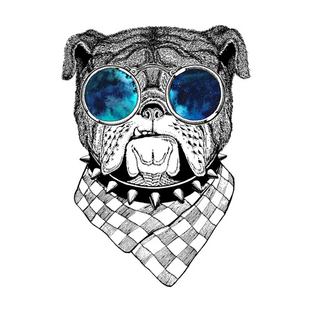 Bulldog Image for tattoo,  , emblem, badge design