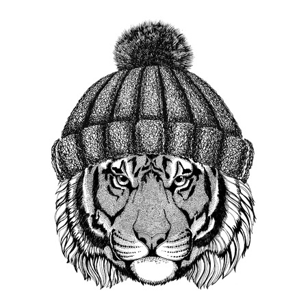 Wild tiger wearing knitted hat Hipster animal Illustration for tattoo, logo, emblem, badge design