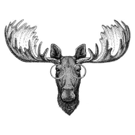 Alci hipster, alci con gli occhiali Immagine per tatuaggio, logo, emblema, design distintivo Archivio Fotografico - 74210348
