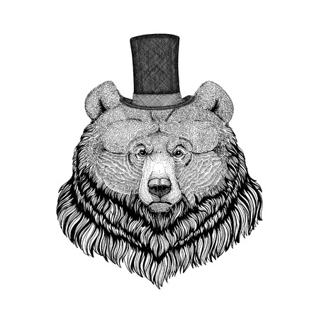 stove pipe: Grizzly bear Hipster style animal Image for tattoo,  , emblem, badge design