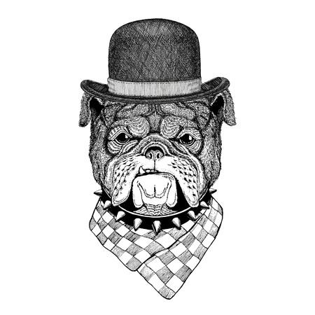 Bulldog Imagen de tatuaje, logo, emblema, diseño de la insignia