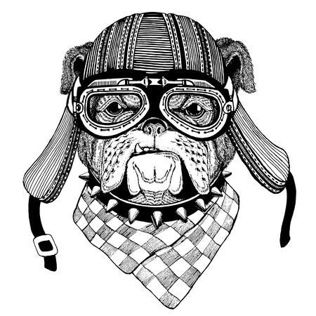 ブルドッグ犬手描き t シャツ、タトゥー、エンブレム、バッジ、パッチのためのオートバイのヘルメット身に着けている動物のイメージ