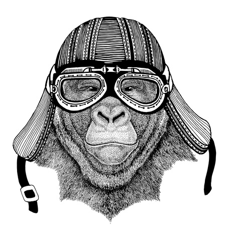 Gorilla, monkey, ape Hand drawn image of animal wearing motorcycle helmet for t-shirt, tattoo, emblem, badge, logo, patch Stock Photo
