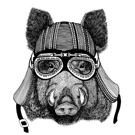 Aper, sanglier, porc, sanglier, sanglier, sanglier, sanglier Image dessiné à la main d'animal portant le casque de moto pour t-shirt, tatouage, emblème, insigne, logo, patch Banque d'images - 76460903